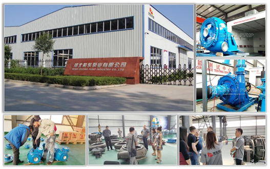 Hebei Zidong Pump Industry Co.,Ltd