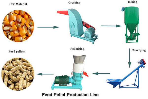 Interaction Between Feed Processing Machinery And Screw Conveyor-3