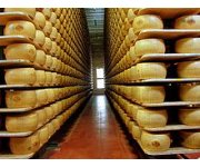 Improved Water Management Propels Growth of Ontario Cheese Maker