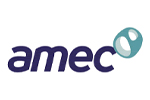 AMEC Technical services