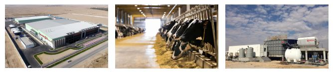 Veolia designs water reuse process for Baladna, Qatar`s major dairy producer