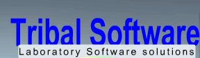 Tribal Software Inc.