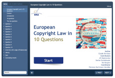 How to Make the Best Use of the Case Law of the CJEU on EU Copyright in Your Legal Practice? Ten Questions on European Copyright Law - Course