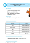 Pressure reducing valves - Hot pressed brass piston type - Fitting unit - Male / Female  910A- Brochure