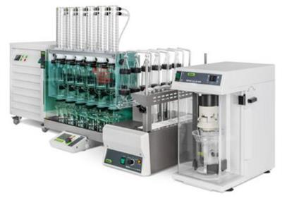Extraction Reference Solutions