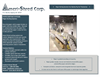 Ameri-Shred - Paper Sorting Systems - Brochure