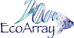 Statistical Analysis of Arrays