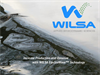 Wilsa ElectroWaveTM Conditioning