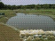 Stormwater Management Services