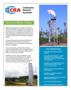 Landfill Gas and Biogas flare