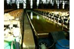 Hazardous waste treatment solutions for chlorine industry