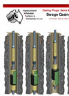 Swage Casing Patch (Seal) Water Well Bore Repair