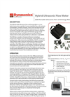 Dynasonics - Model DXN - Portable Hybrid Ultrasonic Flow Meter Datasheet