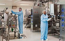 Positive displacement pumps for biopharmaceutical industry