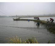 Ohio State Aquaculture Research Program Looking to Recruit New or Beginning Fish Farmers
