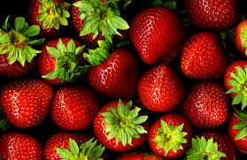 Workshop: How to Grow Bigger, Better Strawberries and Get Them Earlier