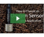 7 Questions to Determine the Oxygen Sensor for Your Application