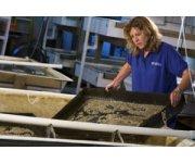 Florida Sea Grant highlights aquaculture in new Florida Trend report