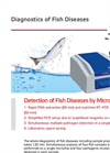 Detection of Fish Diseases by Microchip Real-Time RT-PCR - Applications Note