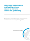 Whitepaper - Addressing environmental and health problems caused by mercury in artisanal gold mining
