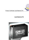 Logotronic - FG - Lead Batteries Brochure
