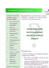 Crowberry Consulting Products Overview - Brochure