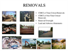 Removals Services Brochure
