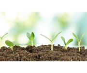 Advanced Ecological Solutions in Water Treatment & Soil Conditioning