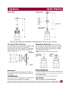 Gate Valve Options – Datasheet