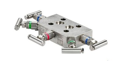 Rosemount - Model 305 - Integral Manifold