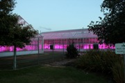 LED lighting can significantly reduce greenhouse horticulture energy consumption