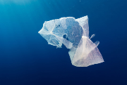 Study into Dutch 'plastic soup` launched following STW investment