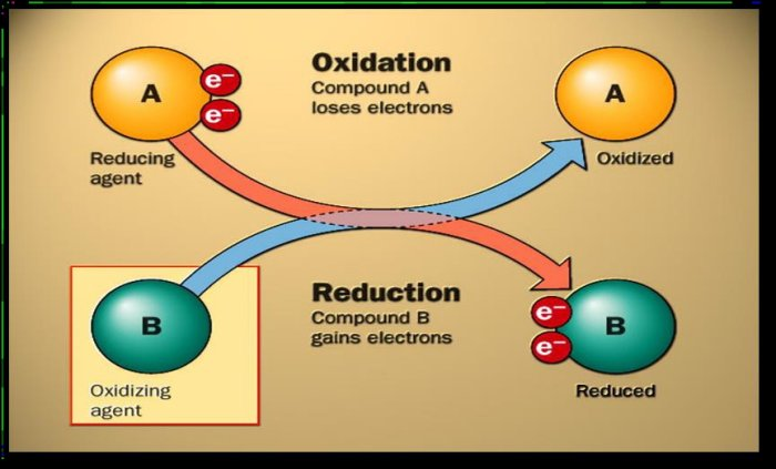 karrierenetzwe hg oxidation technology - 700×423