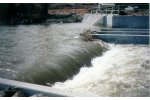 Fish Passage and Environmental Mitigation