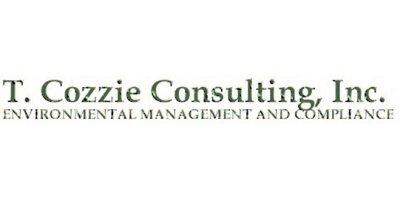 T. Cozzie Consulting Inc.
