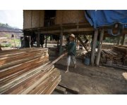 Resurgence in global wood production