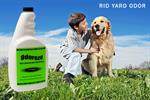 ODOREZE Natural Yard & Concrete Odor Eliminator Spray: Makes 64 Gal. to Stop Stench