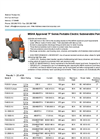 P Series Portable Electric Submersible Pumps Brochure