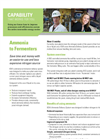 Ammonia Delivery System - Brochure