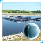 Fixed Film Media System That Provides Year-Round Nitrification.