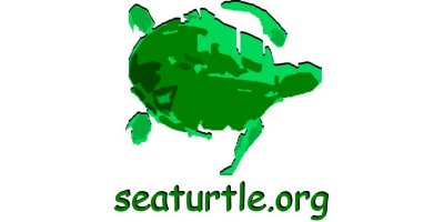 SEATURTLE.ORG Inc.