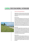 Caring For Your Hydroseeded Lawn - Brochure