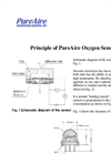 Air Check O2 Oxygen Deficiency Monitor for CO2, N2 Storage Areas - Principle of PureAire Oxygen Sensor Brochure
