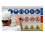 Health and safety risks at the workplace: a joint analysis of three major surveys