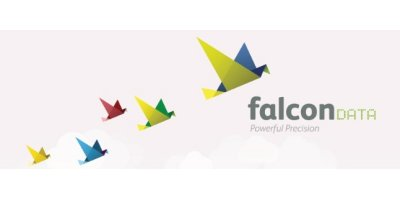 FalconData Ltd.