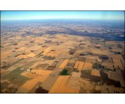 """Land """"Grabbing"""" Grows as Agricultural Resources Dwindle"""