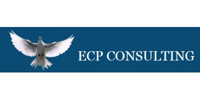 ECP CONSULTING