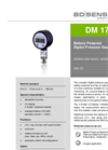 DM 17 Stainless Steel Sensor for Plant and Machine Engineering - Datasheet