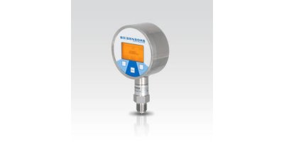 Model DL 01 - Stainless Steel Sensor for Leak Testing, Pipeline Monitoring