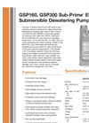 GSP160/GSP300 - Electric Submersible Dewatering Pumps Brochure